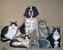 Custom Portrait Eaton Family Pets Cats Dog colored pencil english springer spaniel drawing painting art