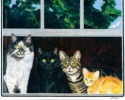 Hebert Family Cat Portrait cats black orange tabby gray longhair tiger pet painting