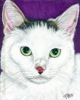 Custom Cat Portrait white gray green eyed cat india ink painting Snubbie