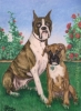 Custom Dog Portrait oil pastel painting boxer dogs painting Matisse T-bone