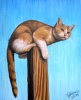 Perched calico pet cat painting wildlife nature art oil pastel