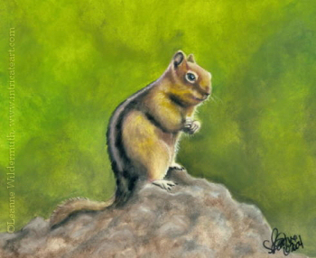 Nature Paintings Images on Nature Portrait Squirrel Wildlife Oil Pastel Painting Art Chippy