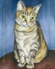 tabby cat painting pet art custom oil portrait