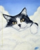 pet tuxedo cat painting oil portrait rainbow bridge art