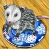 200425 Baby Possum opossum pet art oil painting