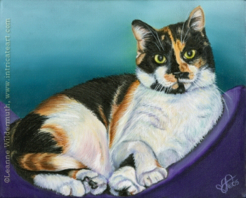 calico pet cat portrait oil painting custom art