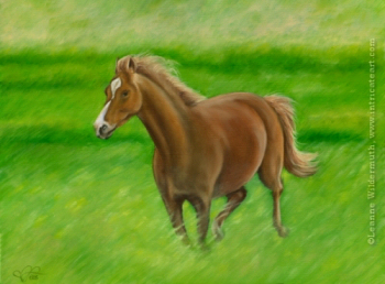 200509 Custom Horse Portrait oil painting wildlife equine Crystal