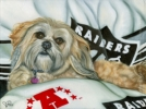 dog art portrait oil painting custom shitzu raiders blanket