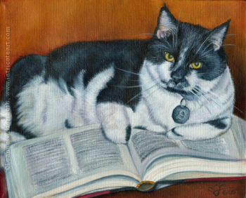 custom cat portrait tuxedo reading book fat cat chubby furry painting