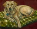 yellow lab oil painting pet portrait original art