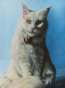 white longhair pet cat portrait oil painting custom