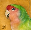 custom lovebird portrait painting fine art oil