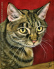 custom oil painting tiger cat portrait original traditional realistic fine art