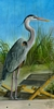 great blue heron bird portrait oil painting realism original realistic fine art