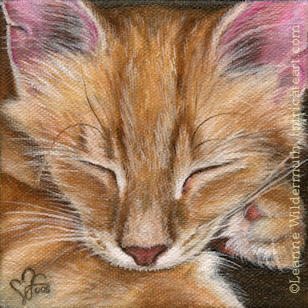 Custom Cat Portrait Soubi orange tabby kitten oil painting original traditional realistic fine art