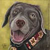 Custom Dog Portrait Lola silver lab puppy oil painting original traditional realistic fine art Leanne Wildermuth