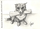 Custom Dog Portrait Foofur pencil graphite drawing art by Leanne Wildermuth