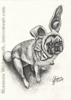 Custom pug dog portrait pencil graphite drawing art by Leanne Wildermuth