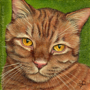 Custom orange tabby cat portrait oil painting art by Leanne Wildermuth