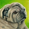 Pug dog portrait oil painting fine art by Leanne Wildermuth