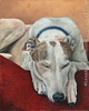 custom portrait greyhound dog oil painting art by Leanne Wildermuth