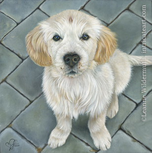 custom dog Golden Retriever puppy portrait oil painting art by Leanne Wildermuth
