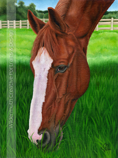 custom horse portrait oil painting art by Leanne Wildermuth