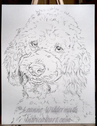 dog painting sketch black poodle