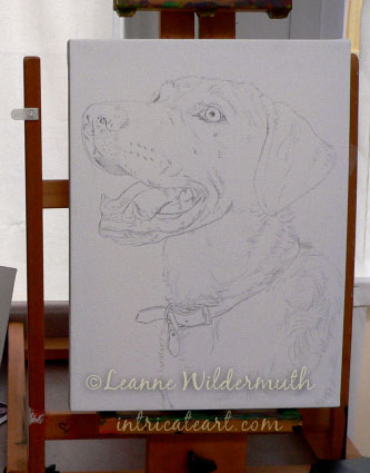yellow lab dog portrait oil painting sketch work in progress custom art