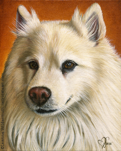 dog portrait completed custom oil painting leanne wildermuth american eskimo' class=
