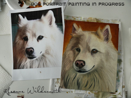 american eskimo custom dog portrait painting oil original work in progress underpainting' class=