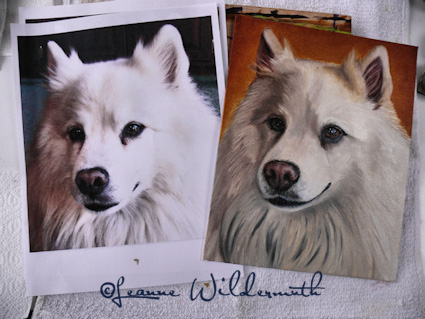 dog portrait custom painting art american eskimo' class=