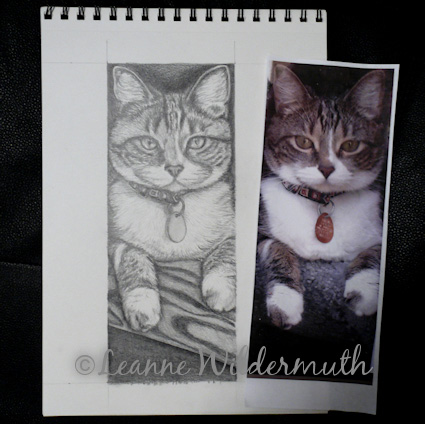 custom cat portrait art pencil graphite drawing