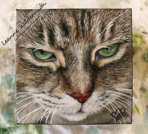 tabby cat portrait oil painting by Leanne Wildermuth