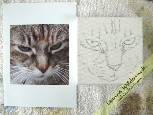 cat portrait oil painting sketch by Leanne Wildermuth
