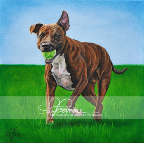 Brindle pit bull terrier portrait painting by Leanne Wildermuth