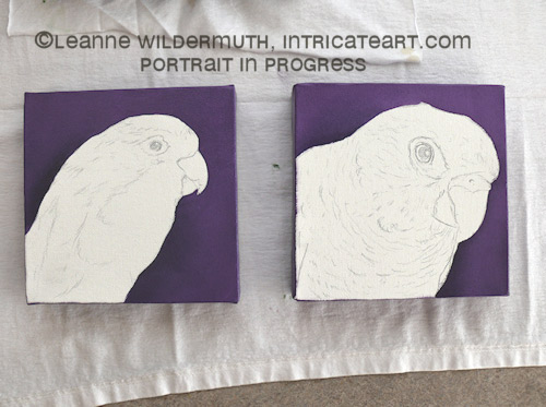 pacific parrotlet conure bird portrait oil paintings custom art leanne wildermuth' class=
