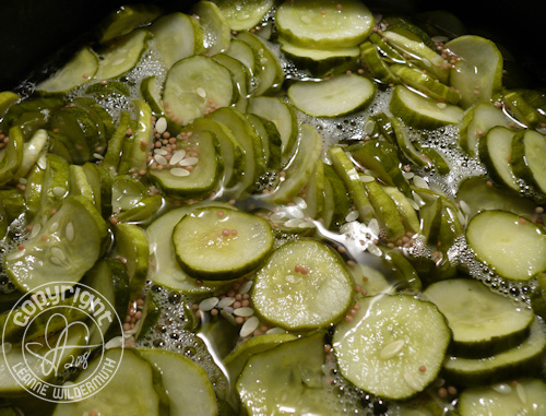 bread and butter pickles cucumber garden leanne wildermuth