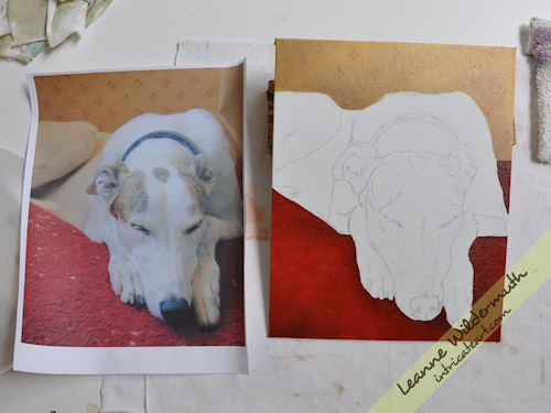 Greyhound dog portrait progress by Leanne Wildermuth