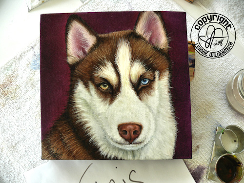 red white husky custom oil portrait painting original leanne wildermuth