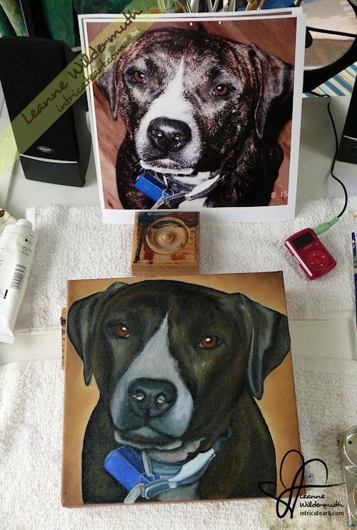 dog portrait brindle pit bull oil painting progress Leanne Wildermuth