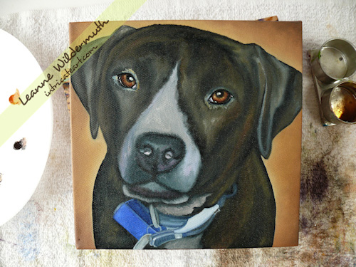 pit bull dog portrait oil painting by Leanne Wildermuth