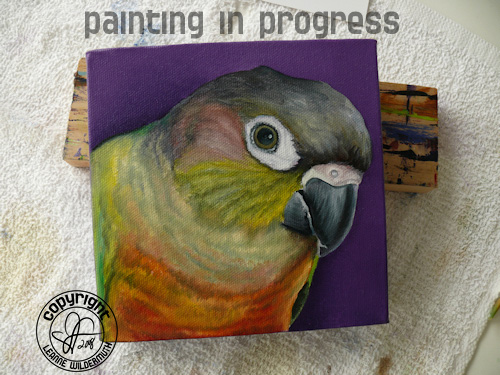 custom bird portrait painting in progress Yellow-Sided Green Cheeked Conure