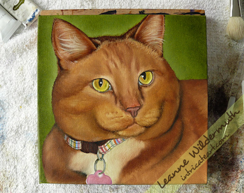 kona orange tabby cat painting work in progress 3