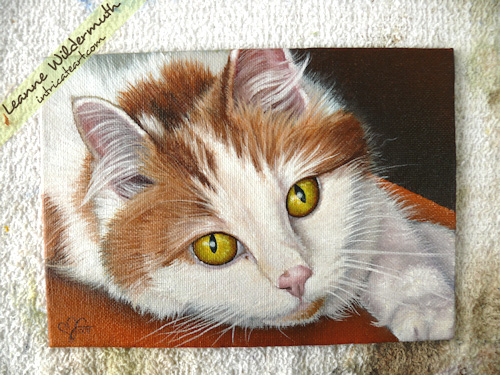 orange white tabby cat painting portrait by Leanne Wildermuth