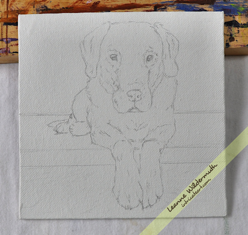 chocolate lab portrait sketch by Leanne Wildermuth