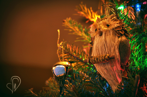 owl ornament natural photo by Leanne Wildermuth