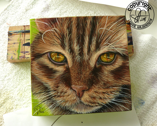 custom cat portrait oil painting original leanne wildermuth