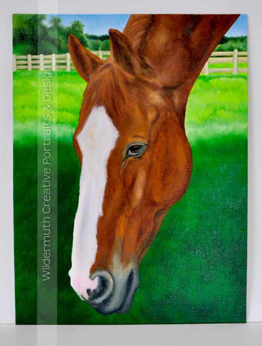 chestnut horse portrait oil painting work in progress by Leanne Wildermuth