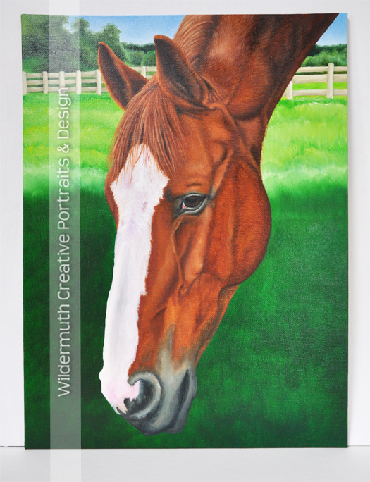 chestnut horse custom oil painting progress by Leanne Wildermuth